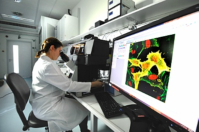 Foto: Fluorescence microscopy at the new Center for Radiopharmaceutical Tumor Research ©Copyright: Frank Bierstedt/HZDR